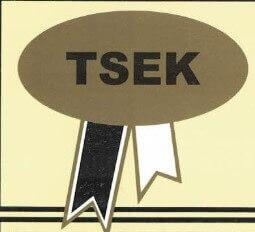 Türk Standartları Enstitüsü Kurumu Logo